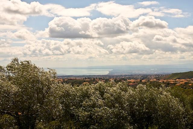 Die Kulturlandschaft Siziliens ist geprägt von Olivenhainen. Hier Siziliens Küste mit Blick auf Olivenhaine
